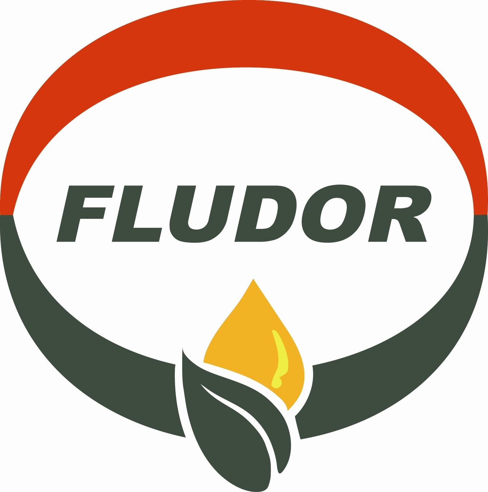 Fludor Logo